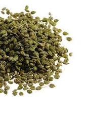 bishop-weed-seeds-250x250