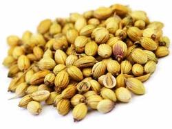 corriander-seeds-250x250