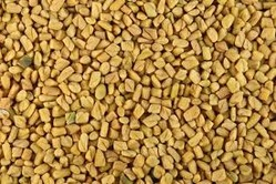fenugreek-seeds-250x250